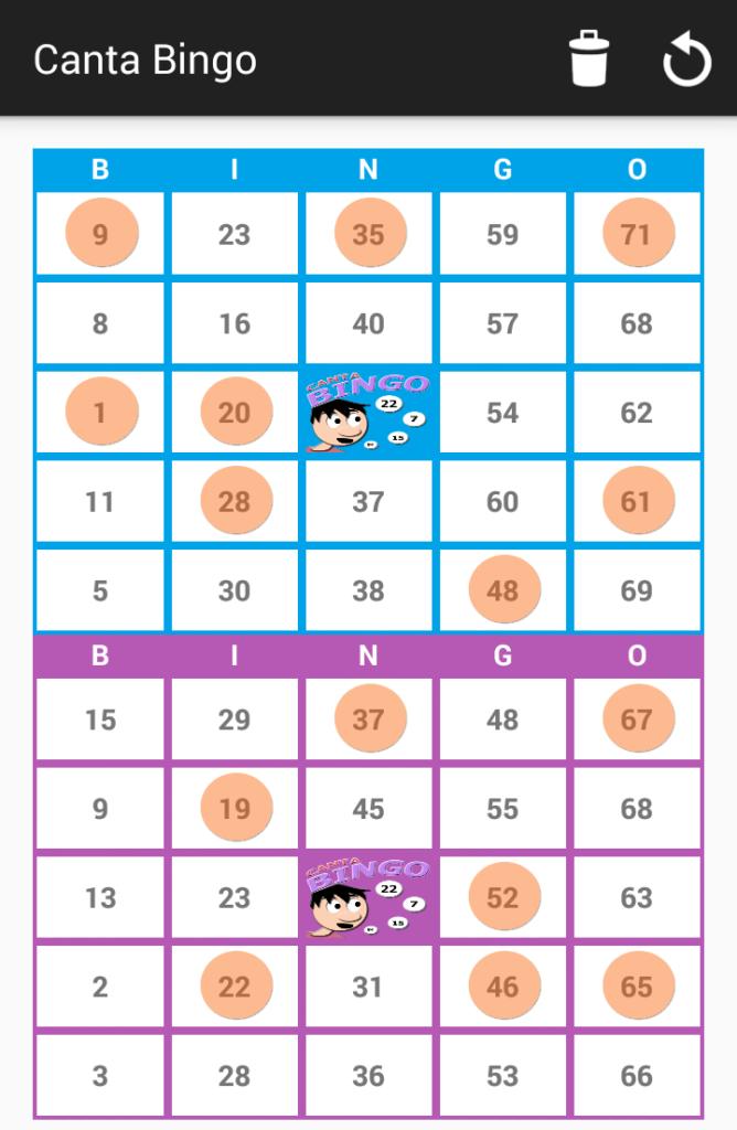 Dos cartones de Bingo 75 - Canta Bingo